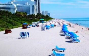 Get a title loan with a loan provider near you in Miami, Florida.